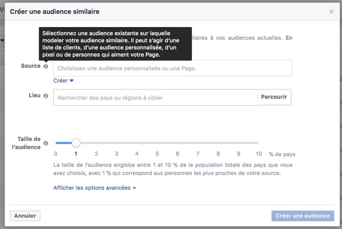 blog-elloha-audience-similaire-facebook
