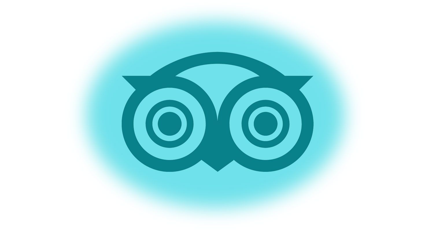 blog-elloha-tripadvisor-resultats-2018