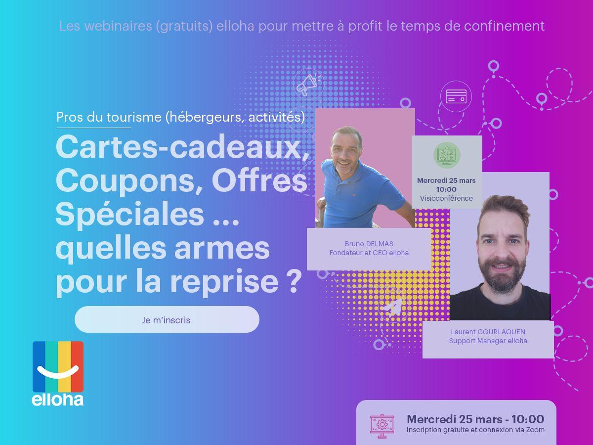 Webinaire-2-Avec-Laurent-Gourlaouen